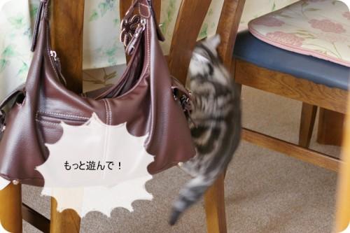 椅子に這い上がる!
